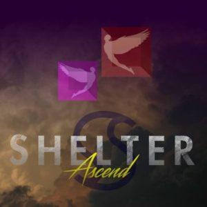 Shelter - Asvend